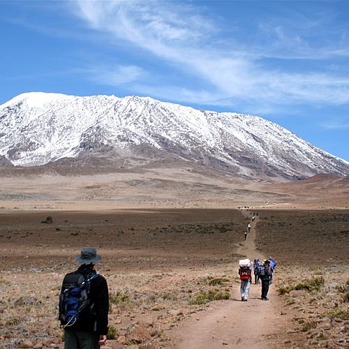 Ascension du Kilimandjaro-Voie Machame en petit groupe - Arusha -