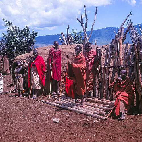 Safari magique et randonnée Maasai - Arusha -