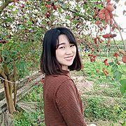 Il tour operator locale di Ngoc Anh