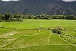 Ecotourisme au Laos