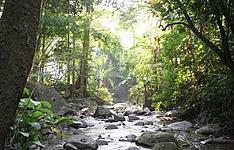 Trekking et tribus autour de Chiang Mai