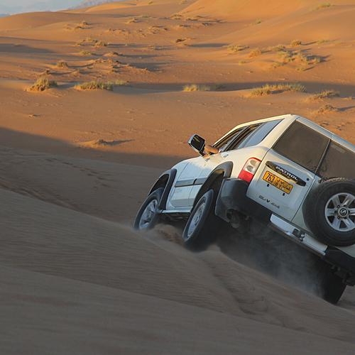 Road Trip en liberté entre oasis et désert - Muţraḩ -