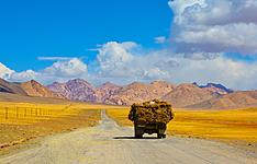 Aventure sur la route de la soie