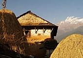 Randonnée de Bhumdi à Pokhara via Shanti Stupa