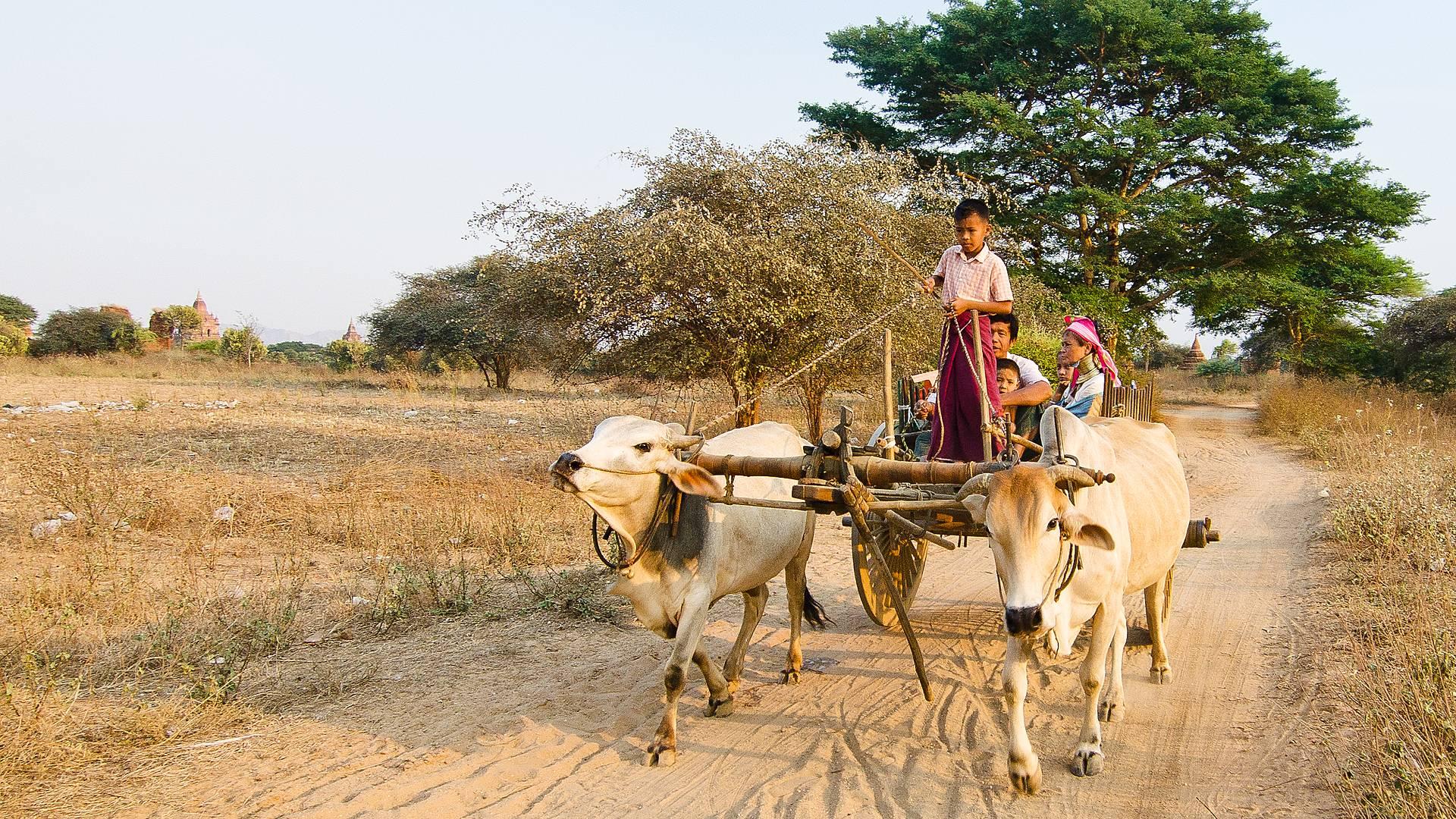 Rêves birmans en famille