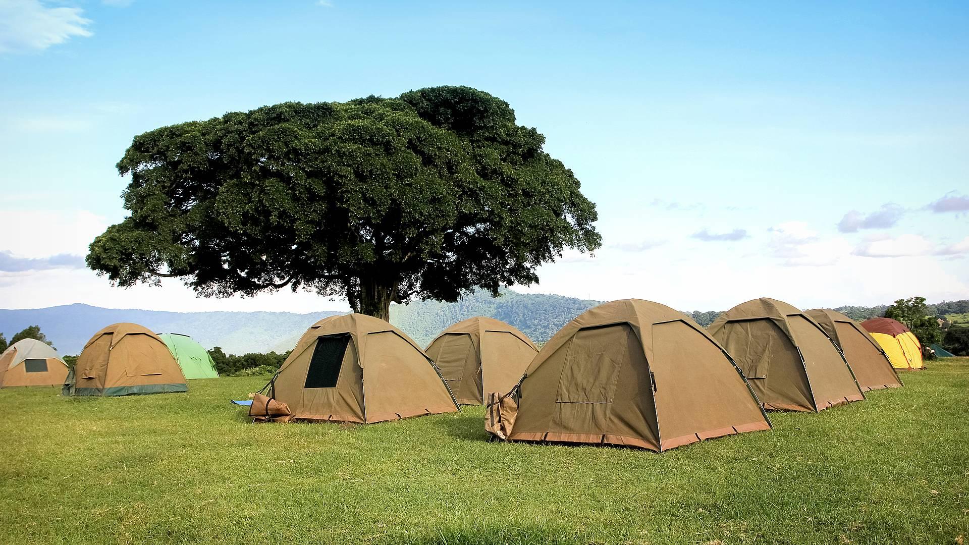 Safari in campeggio e relax a Zanzibar