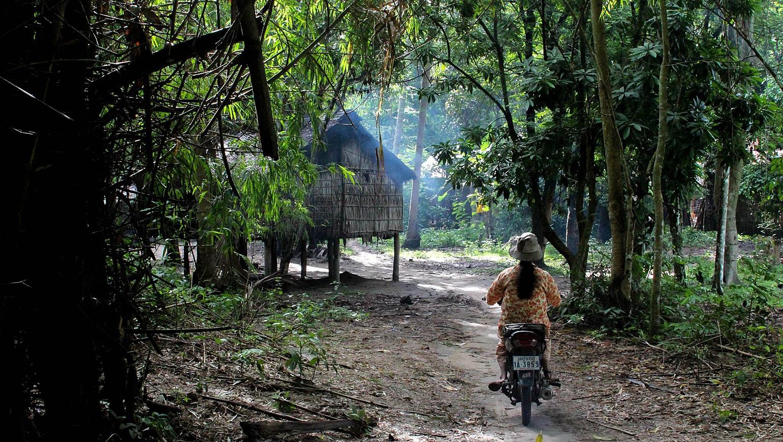 Image Découverte des merveilles du Kerala à vélo