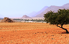 Namibie à l\'infini