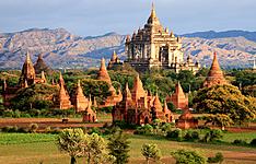 Les joyaux du Myanmar en liberté