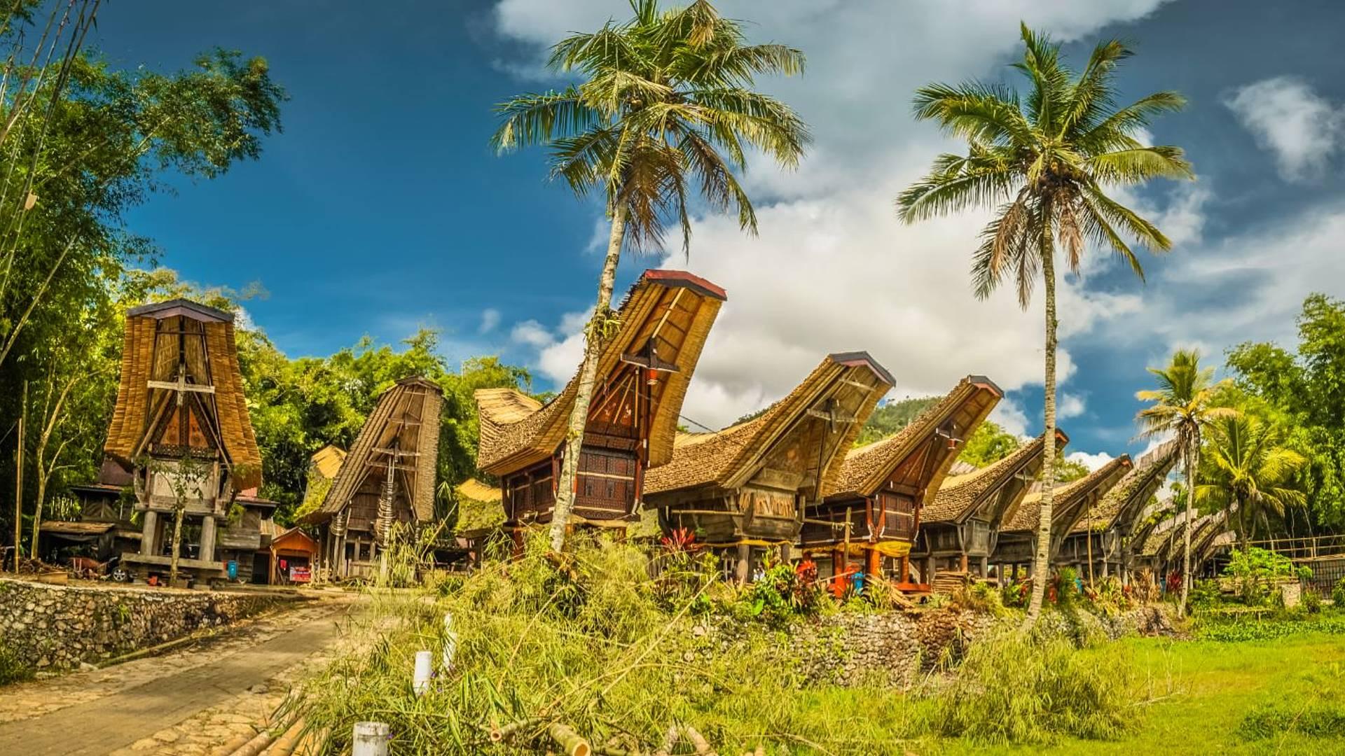 Cultura Toraja y aventura en Sulawesi