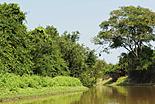 Bolivie-Amazonie