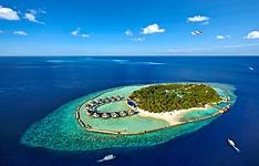 Ellaidhoo, paradis des plongeurs et amoureux du snorkeling