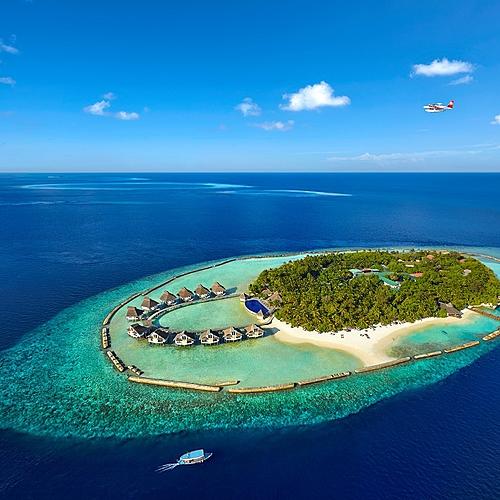 Ellaidhoo, paradis des plongeurs et amoureux du snorkeling -