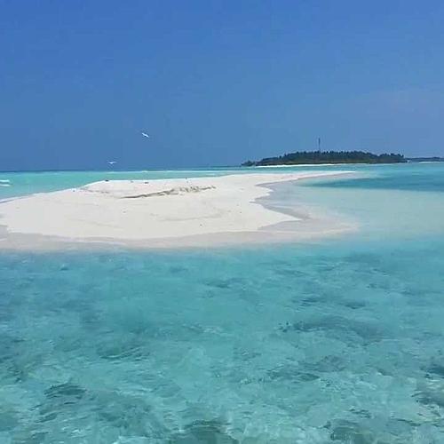 Lancez-vous à la découverte d'une vraie expérience locale sur l'île de Fenfushi! -