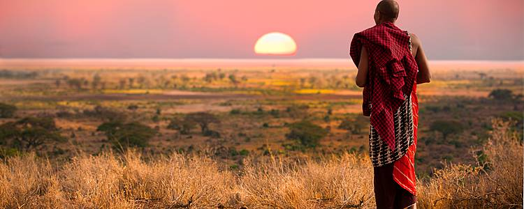 Amboseli, Samburu and Mara Highlights