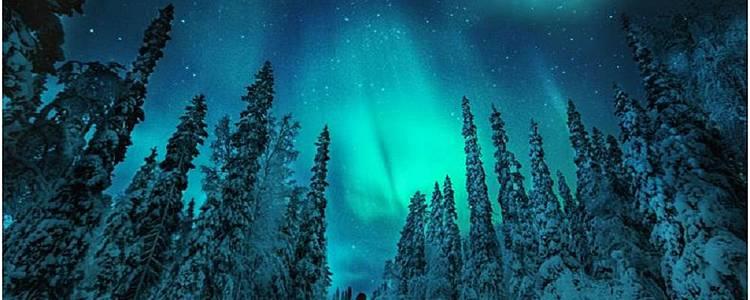 Tour multiattività a Rovaniemi
