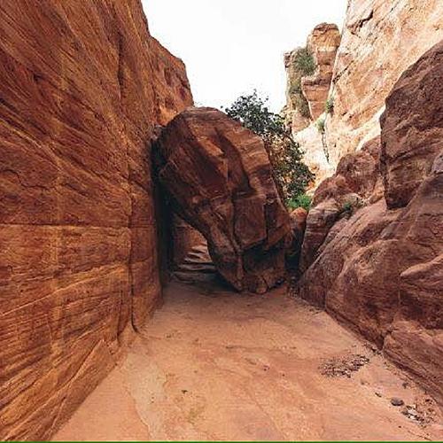Randonnée entre les canyons - Amman - sur-mesure - circuit - evaneos