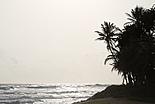 8 jours au Sri Lanka