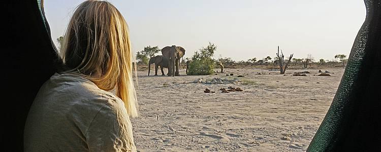 Camping-Abenteuer mit Abstecher nach Botswana