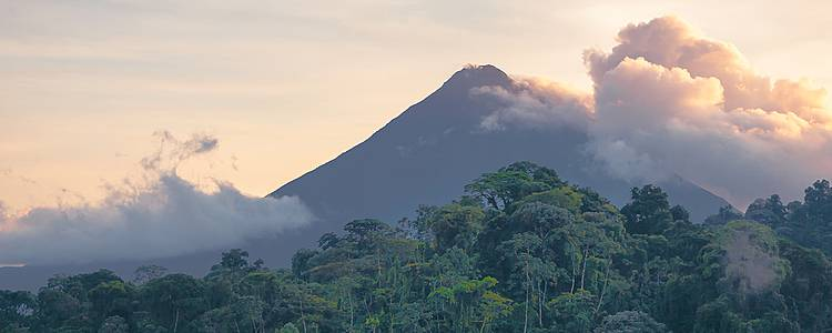 Cloud forests of Costa Rica
