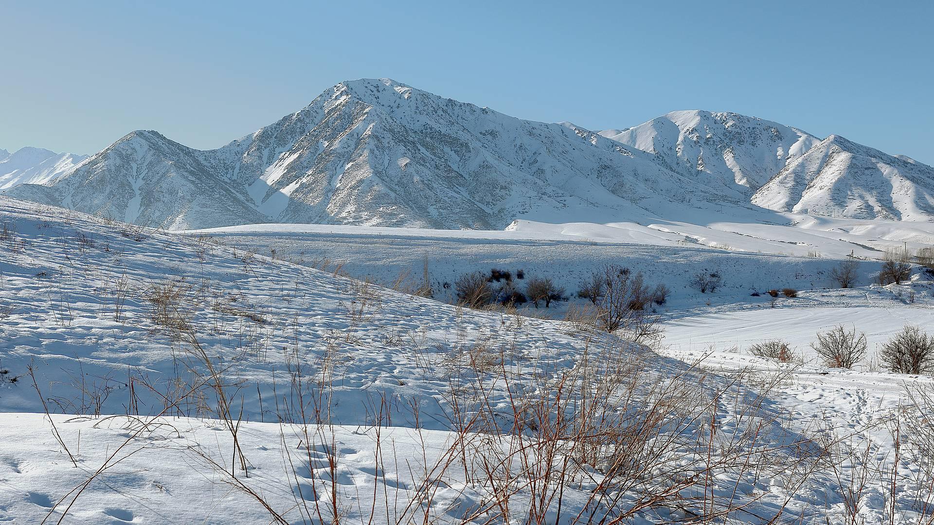 Natura e classici d'inverno