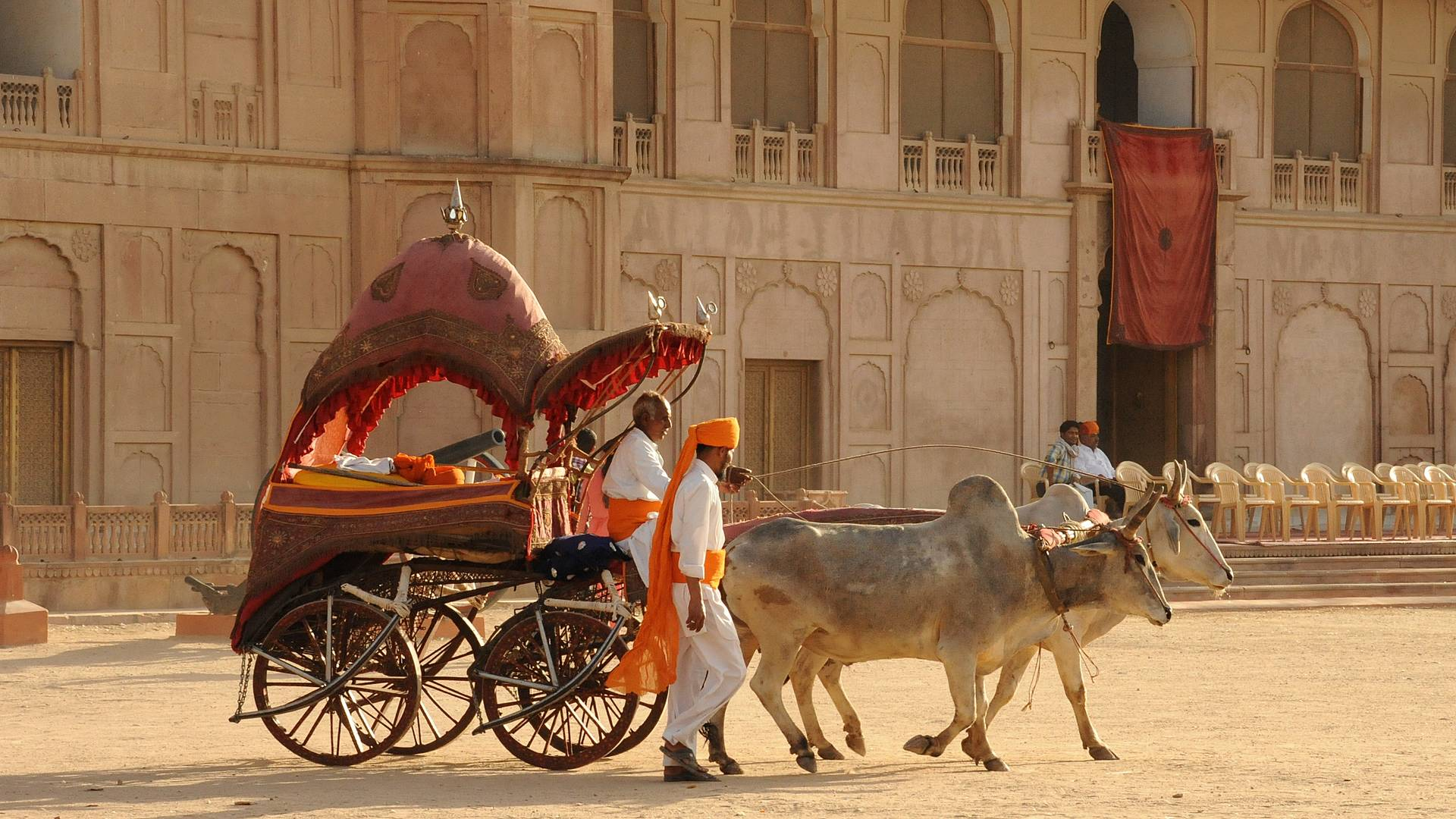 Esperienze culturali e umane nella terra dei Maharaja