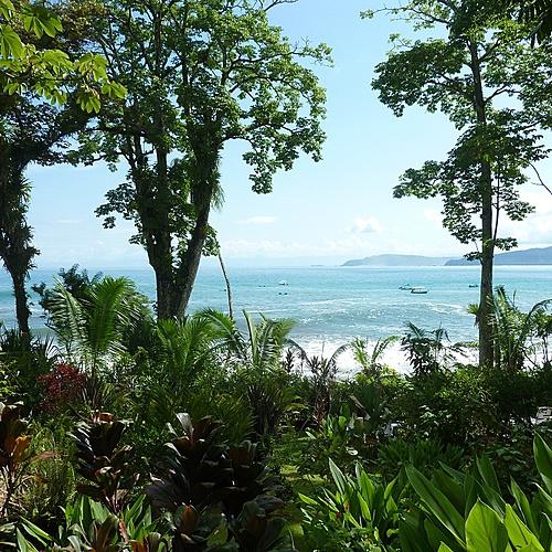 Entre Jungle et océan - San José -