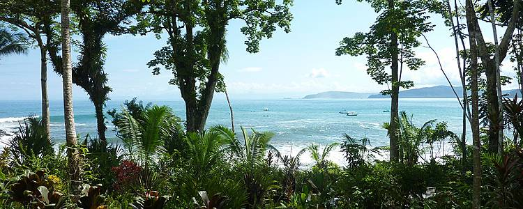 Entre Jungle et océan