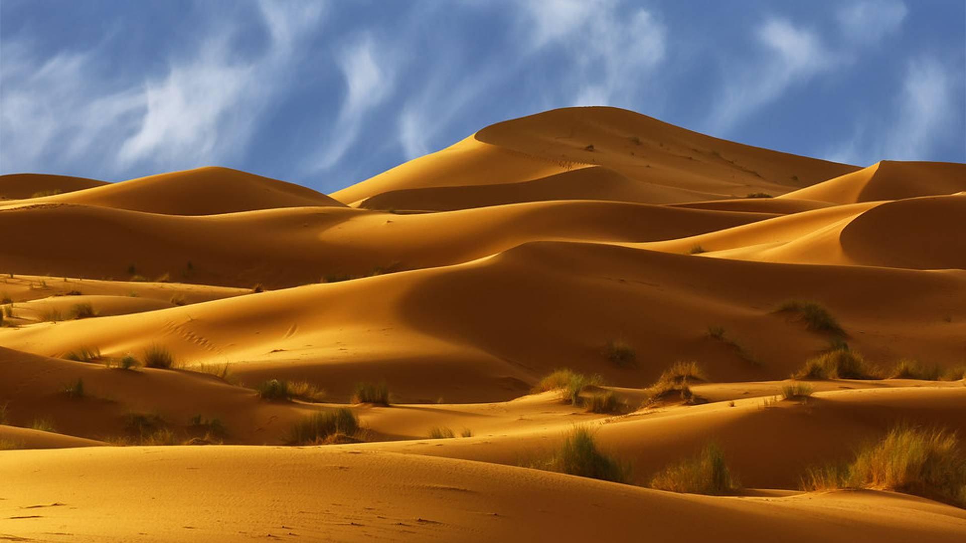 Spedizione sulle dune dell'Erg-Chebbi