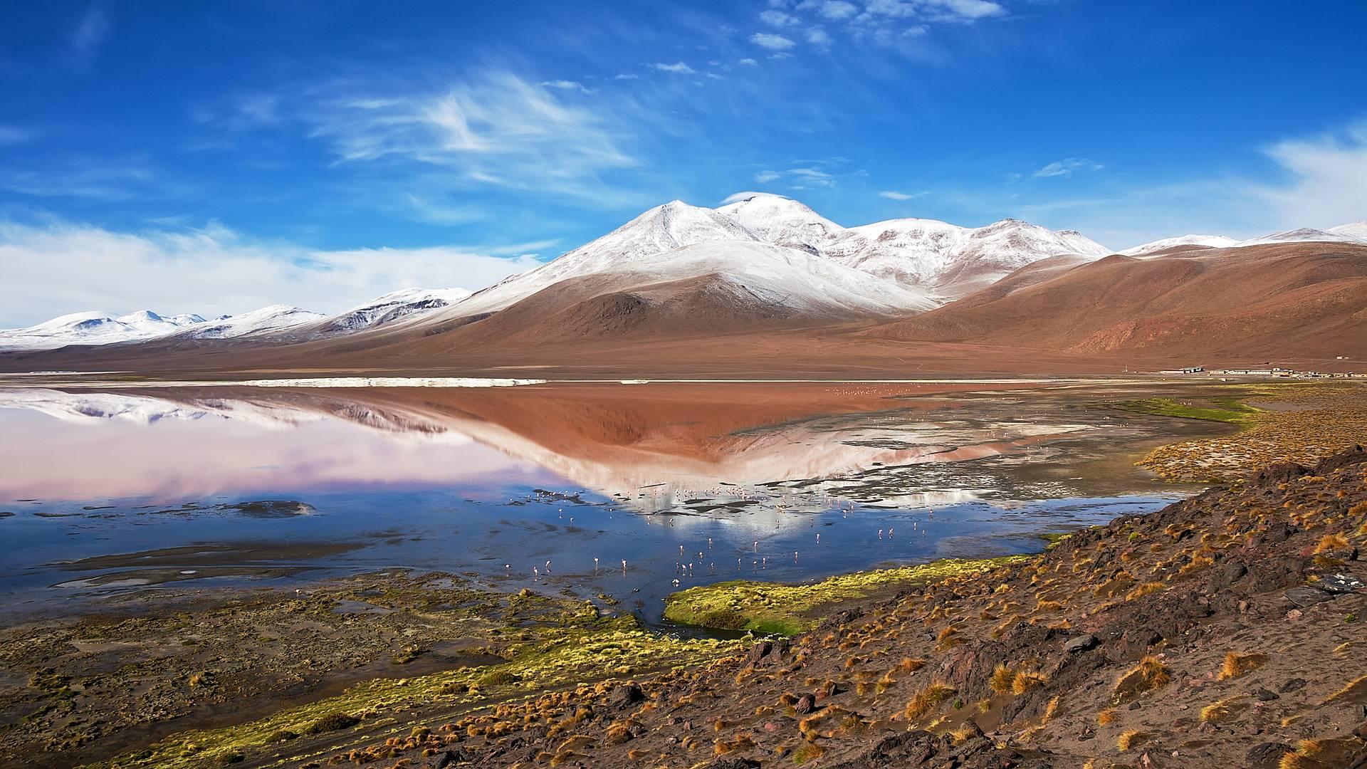 Salar d'Uyuni, lagunes et villes coloniales- Potosi - Sucre