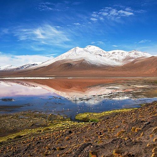 Salar d'Uyuni, lagunes et villes coloniales- Potosi - Sucre - Villamar -