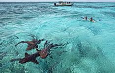 Voyages de noces dans les Caraïbes