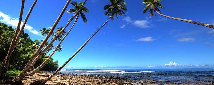 Romance entre Nueva Zelanda y Fiji