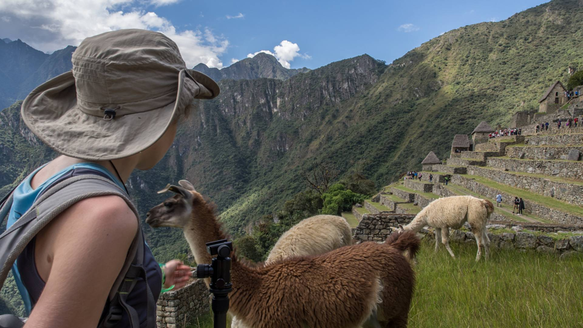 Action und Abenteuer ab Lima