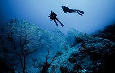 Séjour de plongée sous-marine